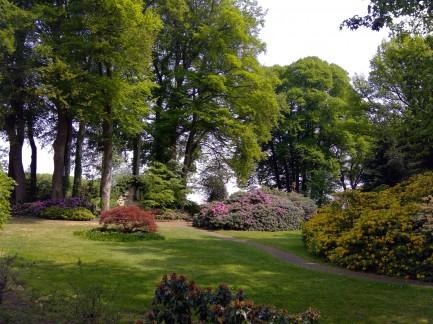 Onze bloeiende tuin